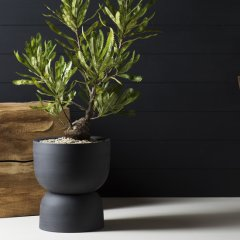 Pot your fancy plants in handcrafted pieces from Angus &#038&#x3B; Celeste