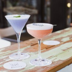 Sip on pet-nat and craft botanicals at Broadbeach's newest watering hole Brucie's Gin & Wine Bar